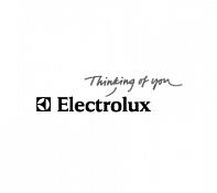 Услуги таможенного брокера для Electrolux